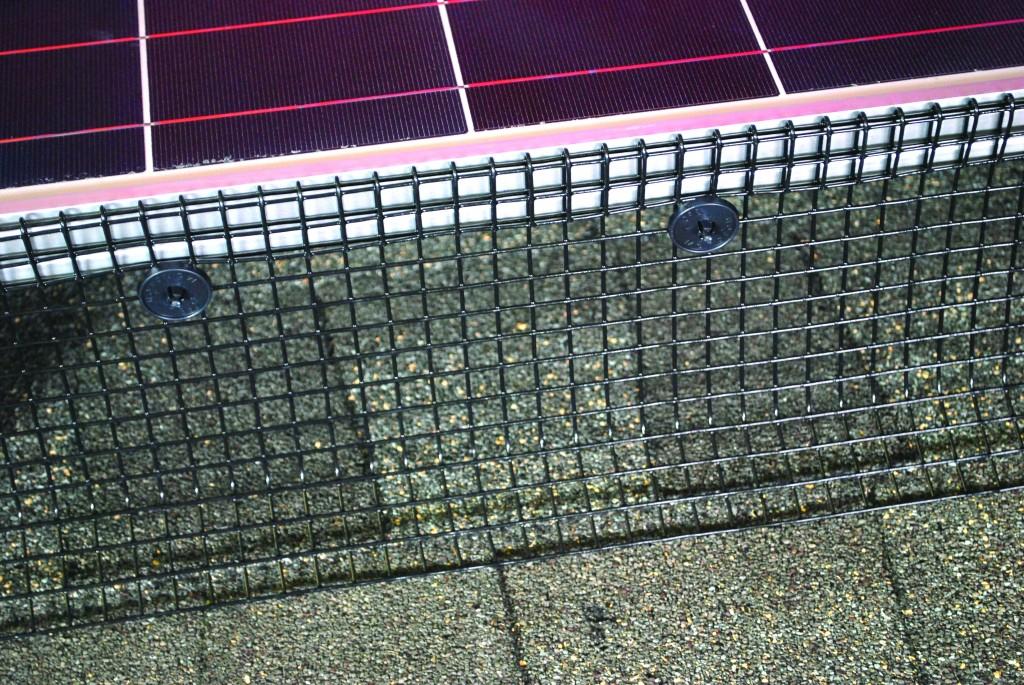 Black Pvc Coated Solar Panel Mesh Pest Trader