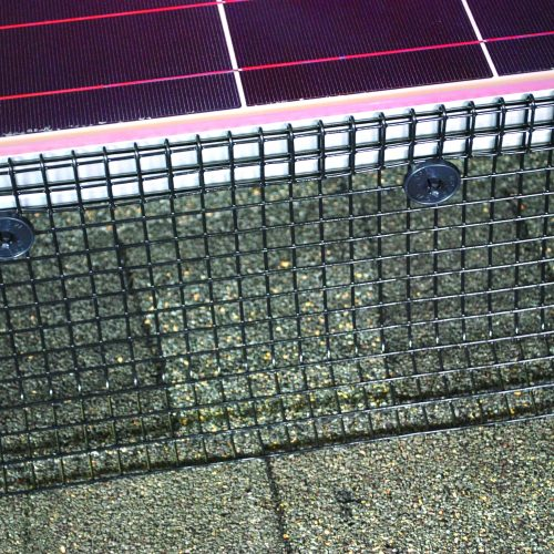 Black PVC- Coated Solar Panel Mesh